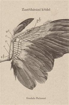 Zastřihávání křídel