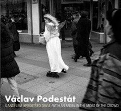 Václav Podestát