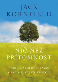 Nic než přítomnost - Najděte svobodu, lásku a radost, ať jste kdekoli