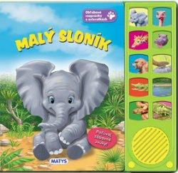 Malý sloník