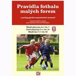 Pravidla fotbalu malých forem