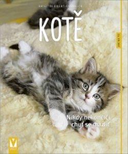 Kotě - Nikdy nekončící chuť se mazlit