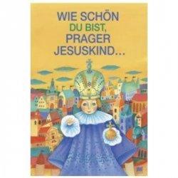 Die Hände für Das Prager Jususkind: Ruce pro Pražské Jezulátko (německy)