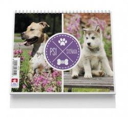 Psi a štěňata - stolní kalendář 2020