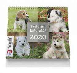Pes - stolní kalendář mini 2020