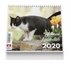 Kočka - stolní kalendář mini 2020