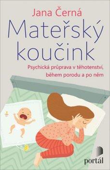 Mateřský koučink - Psychická příprava v těhotenství, během porodu a po něm
