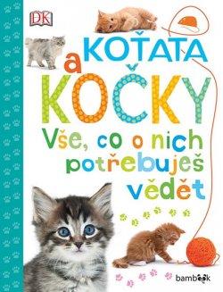 Koťata a kočky Vše, co o nich potřebujete vědět