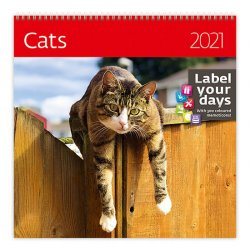 Kalendář 2021 nástěnný: Cats, 300x300
