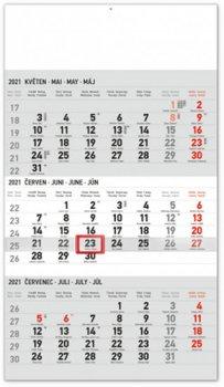 Kalendář 2021 nástěnný: 3měsíční Standard šedý – s českými jmény, 29,5 × 43 cm