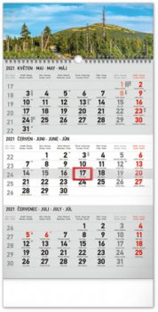 Kalendář 2021 nástěnný: 3měsíční Krajina šedý – s českými jmény, 29,5 × 43 cm