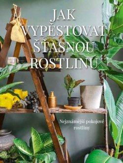 Jak vypěstovat šťastnou rostlinu