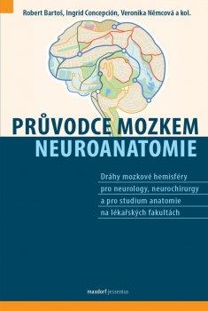 Průvodce mozkem, Neuroanatomie